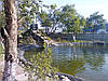 Пайка пленки для прудов 1мм любых размеров, фото 5