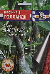 Огурец Директор F1 (Nunhems Zaden), пакет 10 семян