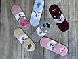 Cлідки Катонові жіночі з мордочками собачок і вушками 35-40 12 шт в уп асорті з 6 ти кольорів, фото 2