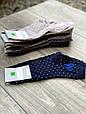 Жіночі бавовняні шкарпетки Montebello середні ароматизовані в горошок з бантиком 36-40 12шт асорті, фото 2