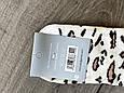 Жіночі бавовняні шкарпетки Montebello середні ароматизовані в горошок з бантиком 36-40 12шт асорті, фото 4