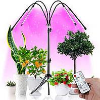 Світлодіодна Фітолампа GrowLight зі Штативом для Вирощування Кімнатних Рослин Full Spectrum Фітосвітильник