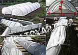 "Парник ""SHADOW"", 3 метра 60 г/м². 1200х800 мм. (Агро-теплица), фото 4"