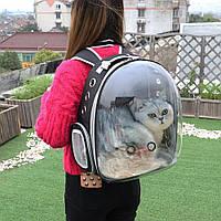 Рюкзак-переноска для котов и собак | Прозрачный рюкзак для переноски животных Pet Cat кошек и собак