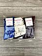 Средние носки стрейчевые Житомир Люкс для женщин с мордочками кисы и следами лапок 36-40 12 шт в уп микс, фото 2