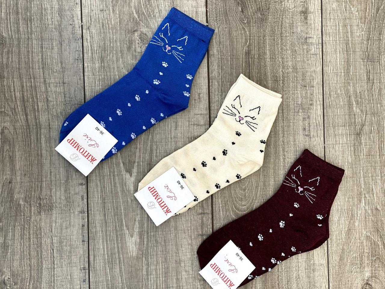 Средние носки стрейчевые Житомир Люкс для женщин с мордочками кисы и следами лапок 36-40 12 шт в уп микс