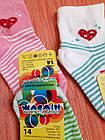 Носки детские на девочек хлопок стрейч Украина размер 14. От 6 пар по 7,50грн, фото 7