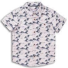 Летняя подростковая рубашка из льна с коротким рукавом для мальчиков 10-13 лет, 140-158 см Minoti, 140-146 см