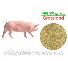 Концентрат БМВД Grassland для супоросних свиноматок 20% Преміум №10971 мішок 25кг