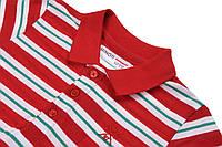 Детская красная футболка поло в полоску для мальчика 4-7 лет 104-122 см MInoti, 104-110 см