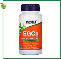 Now Foods, ЭГКГ, Экстракт зеленого чая, 400 мг, 90 капсул, США