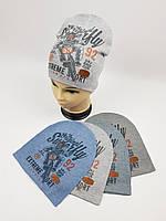 Детские демисезонные вязаные шапки для мальчиков оптом, р.50-52, ANPA (m89), фото 1