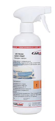 CarLine AirFresh New Car, фото 2
