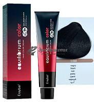 Крем-краска для волос 1/00 черный Erayba Equilibrium Hair Color Cream, 120 мл