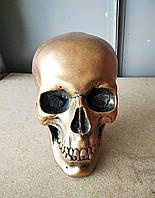 Копилка - череп, цвет бронза, фото 1