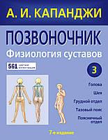 Позвоночник: Физиология суставов (обновленное издание) А. И. Капанджи.