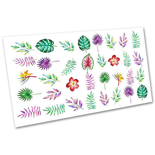 Слайдер-дизайн наклейки на ногти для маникюра водные Листочки и веточки №1727