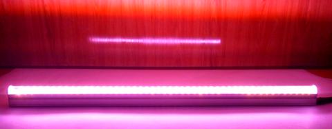 Линейный LED светильник для мясных витрин Р-10W Розовый 60см