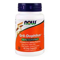Пробиотики для улучшения желудочного тракта Gr8-Dophilus Now Foods 60 гелевых капсул