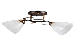 Люстра потолочная на два плафона диаметром 13,5см SC-5740/2A BK+FG