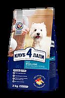 Club 4 Paws Премиум, Сухой корм для взрослых собак мелких пород  Ягненок и Рис 2 кг