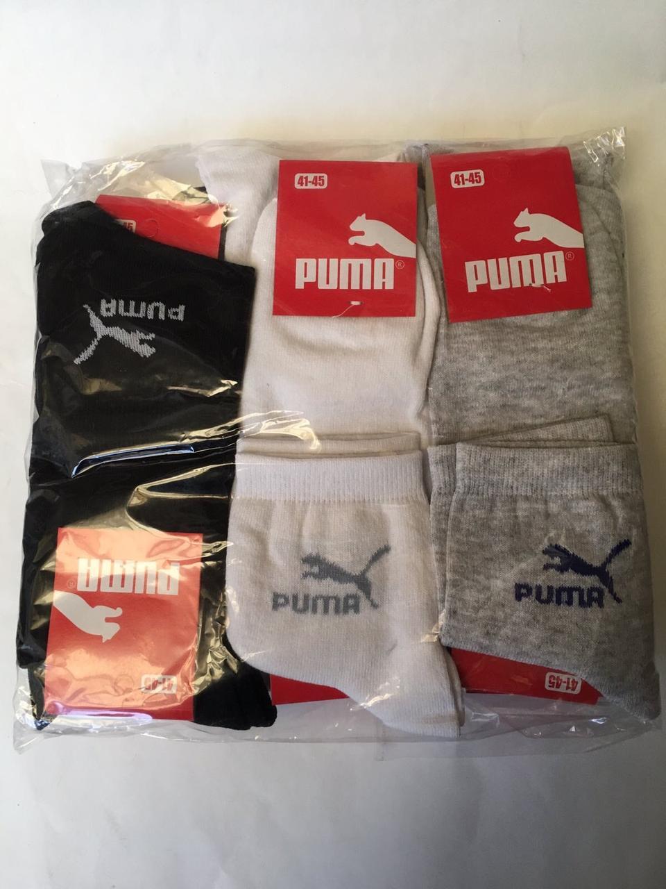 Шкарпетки чоловічі Puma репліка 41-45 Середні Бавовна (від 12 пар)