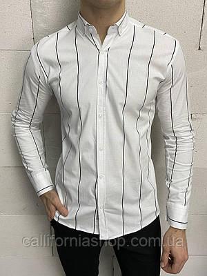 Рубашка мужская белая в черную полоску с длинным рукавом хлопковая