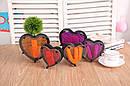 Гвозди ART-PIN Сердце пластик 13,5х14,5х4см, фото 3