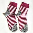 Шкарпетки жіночі в червону смужку мордочки котика на п'ятах і шкарпетках розмір 37-41, фото 2