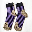 Носки женские в синюю полоску мордочки котика на пятках и носках размер 37-41, фото 3