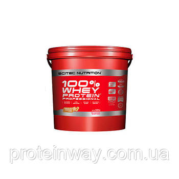 Scitec Nutrition Сывороточный протеин 100% Whey Protein Professional  5000g