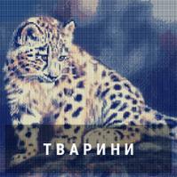 Алмазная живопись - Животные