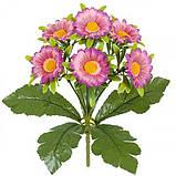 Искусственные цветы букет ромашка цветная Глазок, 29см, фото 2