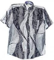 Приталенная сорочка короткий рукав, фото 1