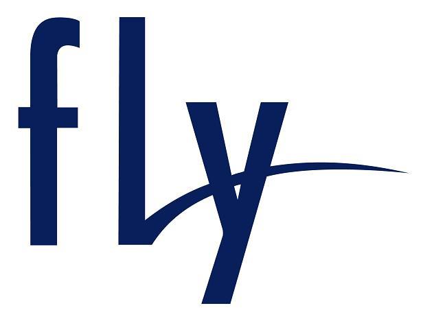 Для Fly