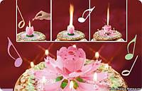 Свеча на торт Фейерверк Музыкальный Лотос