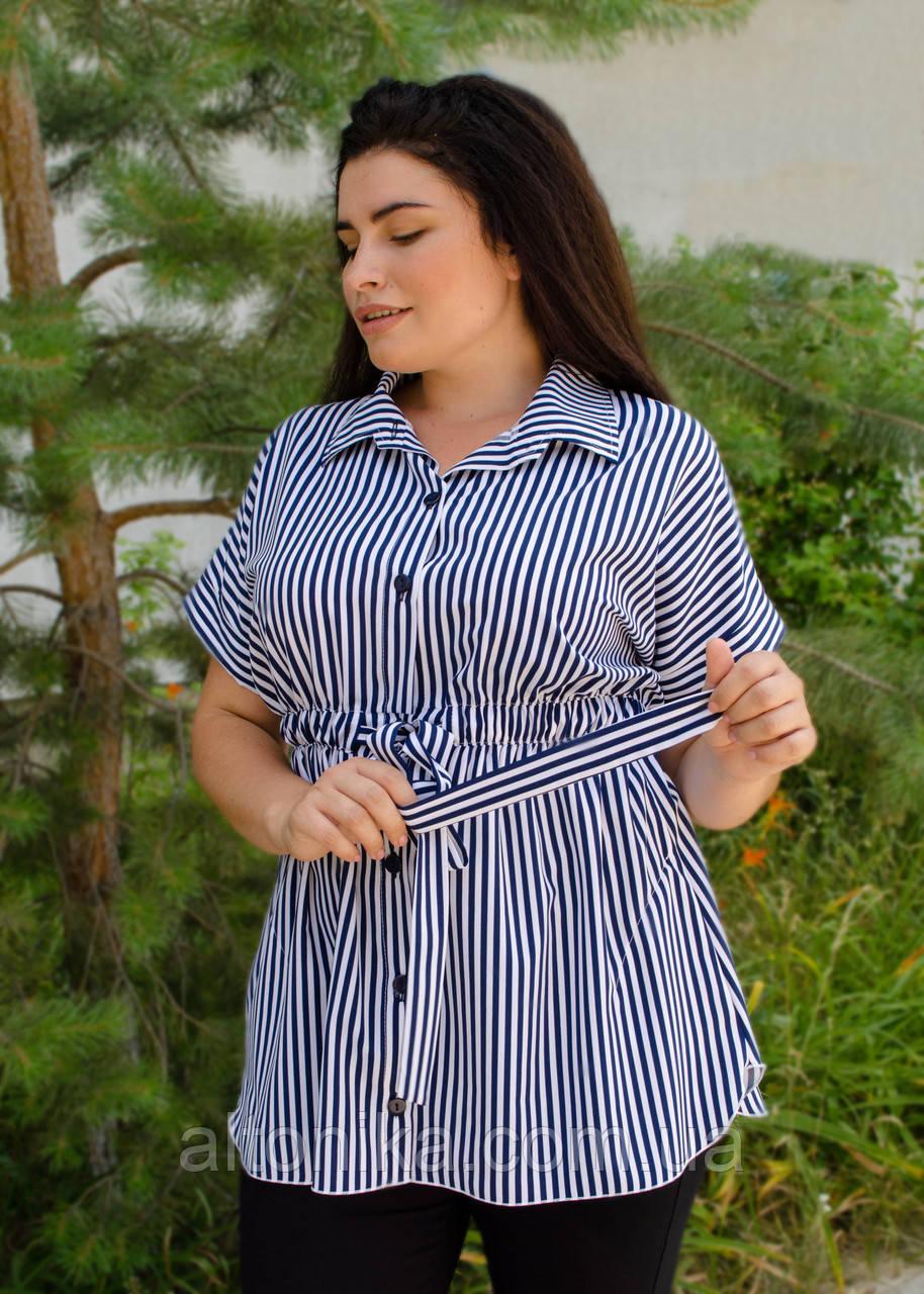Нета. Стильна блуза для великих розмірів. Смуга синьо-біла.