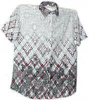 Стильная хлопковая рубашка, фото 1