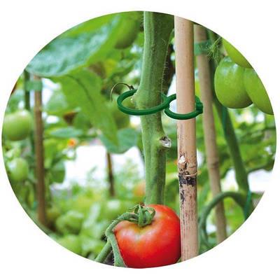 Зажимы для крепления растений, 2 размера,  40 шт, TYK29.