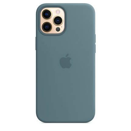 Чохол накладка xCase для iPhone 12 Pro Max Silicone Case Full cactus, фото 2