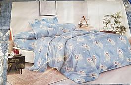 Постельное белье голубое с цветами Лери Макс 21