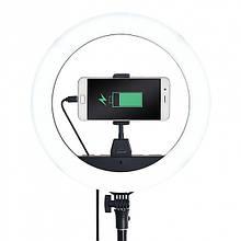 Кільцева лампа ZB-R14 без штатива 34см