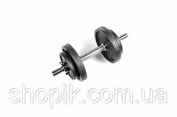 Гантель розбірна чавунна RN-Sport на 8,5 кг, Гантеля металева 8.5 кг. Гантель складальна 8.5 кг чавунна