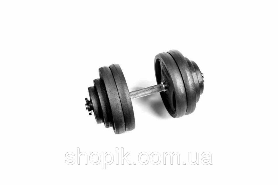 Гантель разборная RN-Sport 28 кг металлическая, чугунная, Гантеля металлическая 28 кг. Гантель наборная 28 кг