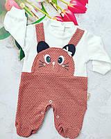 Человечек хлопковый для девочки Котик 0-9 мес