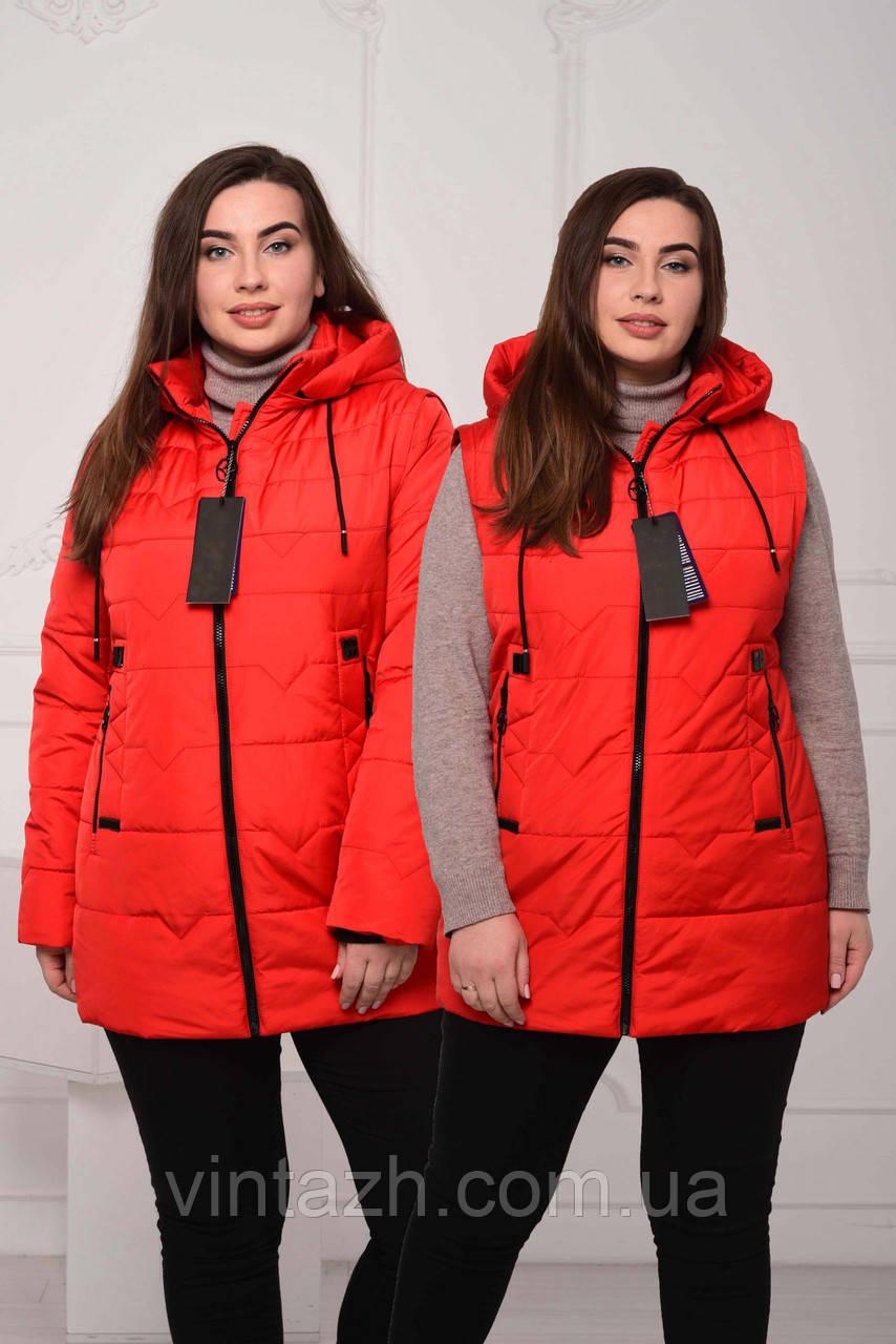 Яскрава жіноча куртка-жилетка розміри 56-64