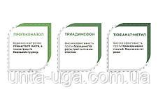 Фунгимакс трехкомпонентный системный фунгицид для первой обработки зерновых, фото 3
