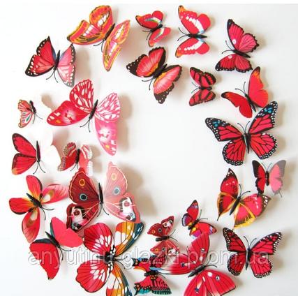 Об'ємні метелики на стіну для декору