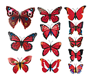 Об'ємні метелики на стіну для декору, фото 2