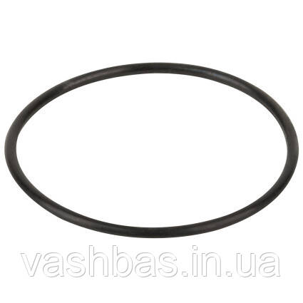 Aquaviva Уплотнительное кольцо корпуса насоса Aquaviva LX WP500-I